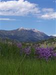 RV Parks in Bozeman Montana