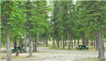RV Parks in Tok Alaska