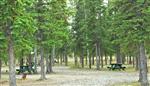 RV Parks in Tok Alaska