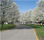 RV Parks in Clarksville Indiana