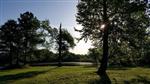 RV Parks in Dillon South Carolina